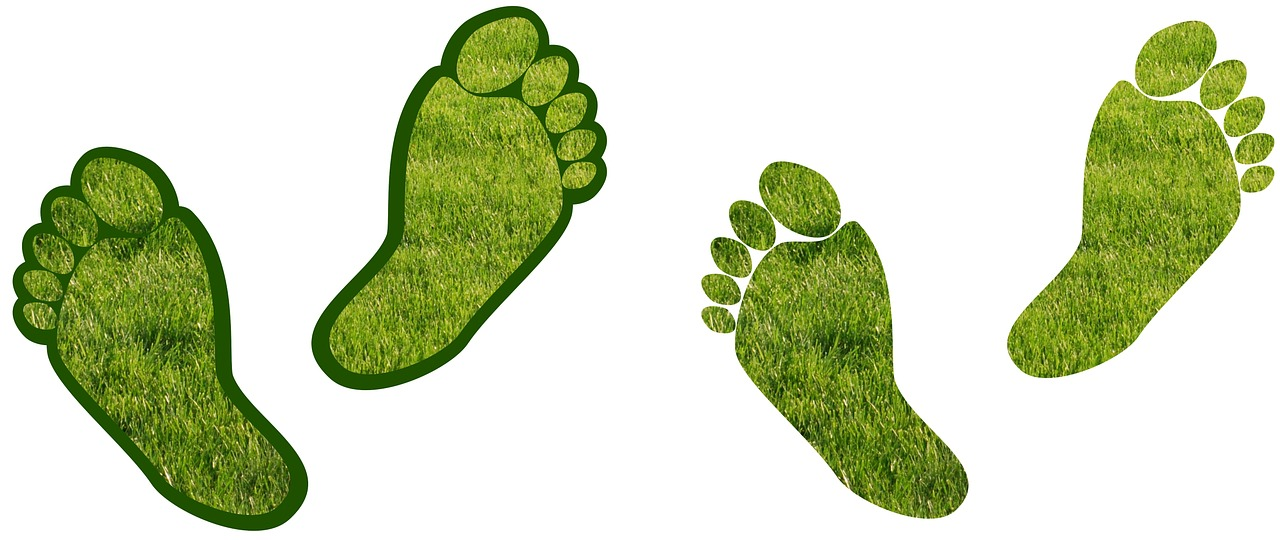 Almost 50% Of Local Authorities Do Not Know Their Own Carbon Footprint