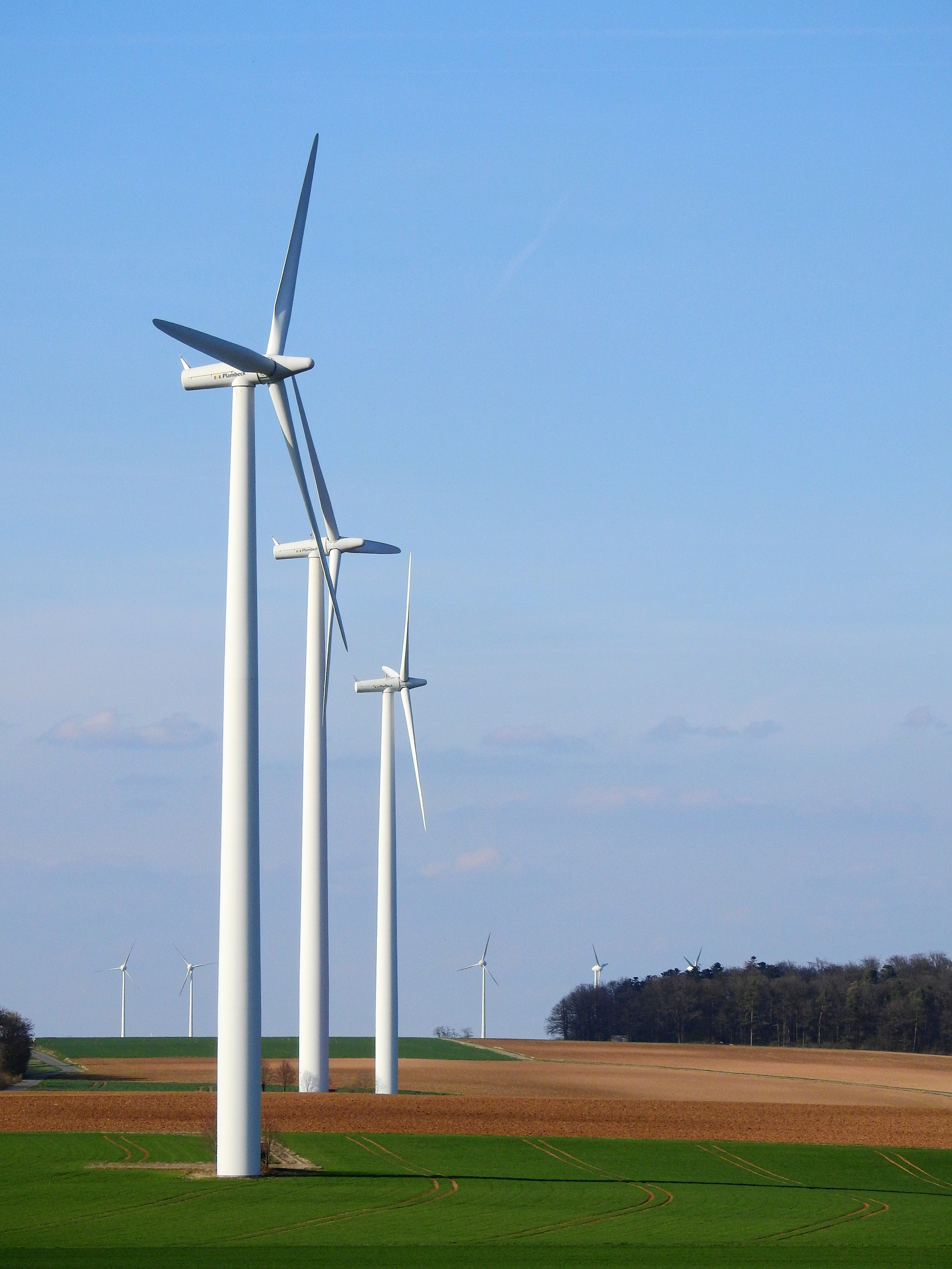 sustainability commitments